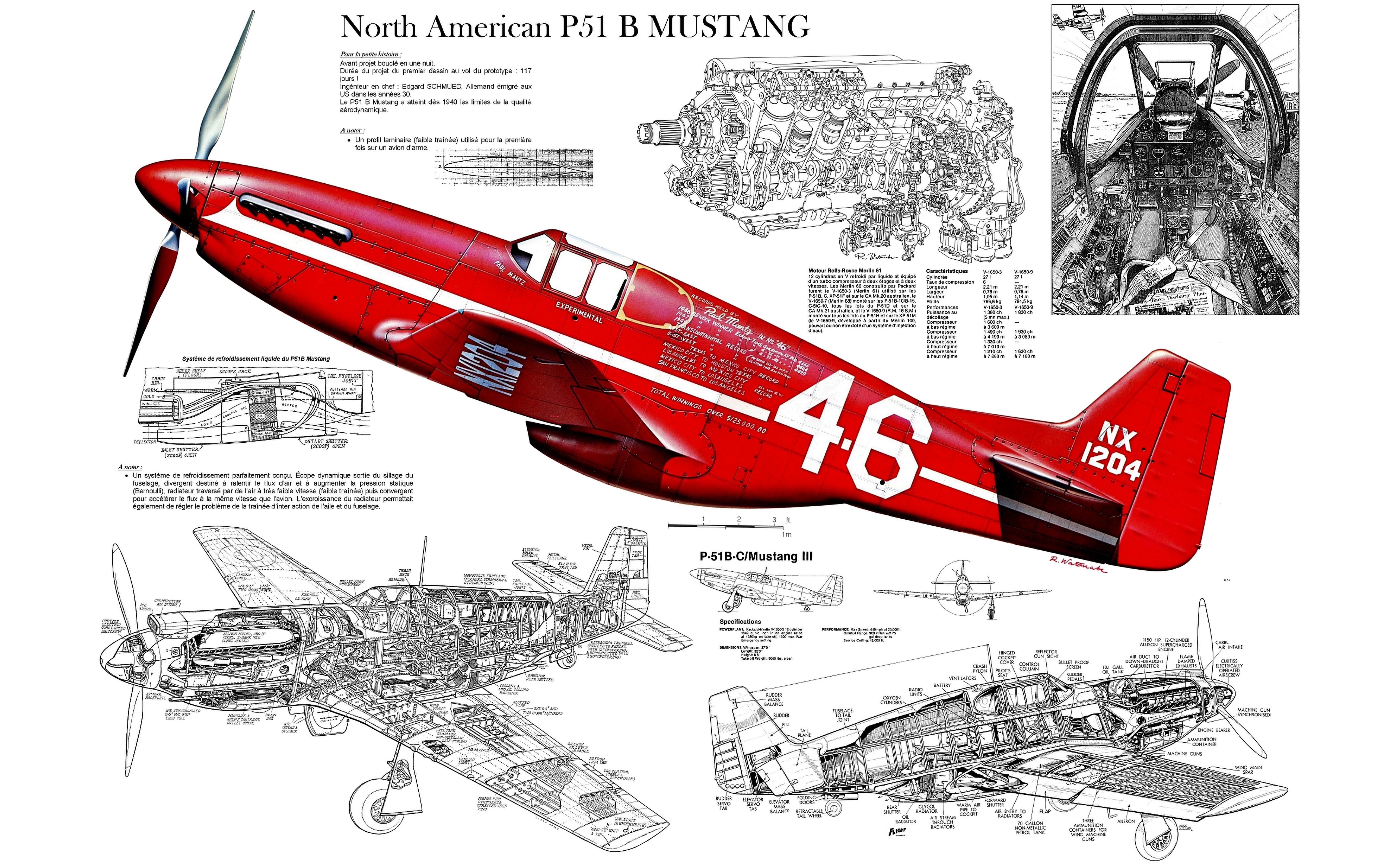 Два истребителя North American P-51 Mustang скачать